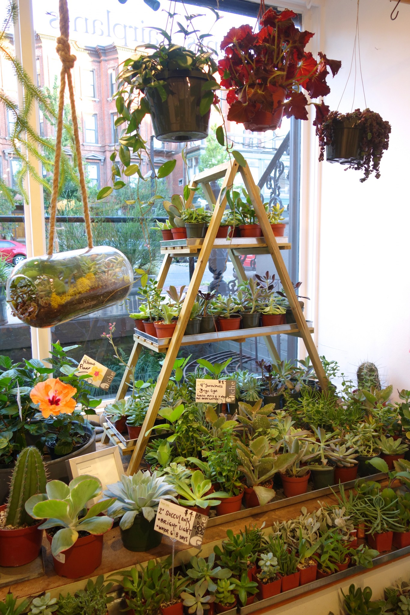 niche urban garden supply, the-alyst.com