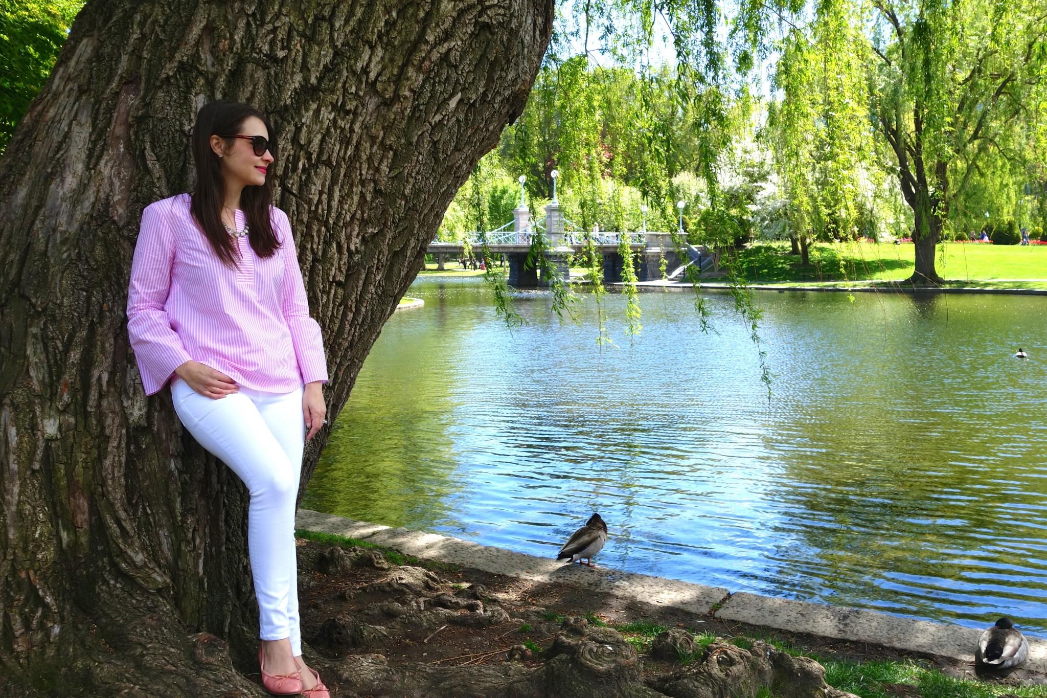boston public garden, the-alyst.com