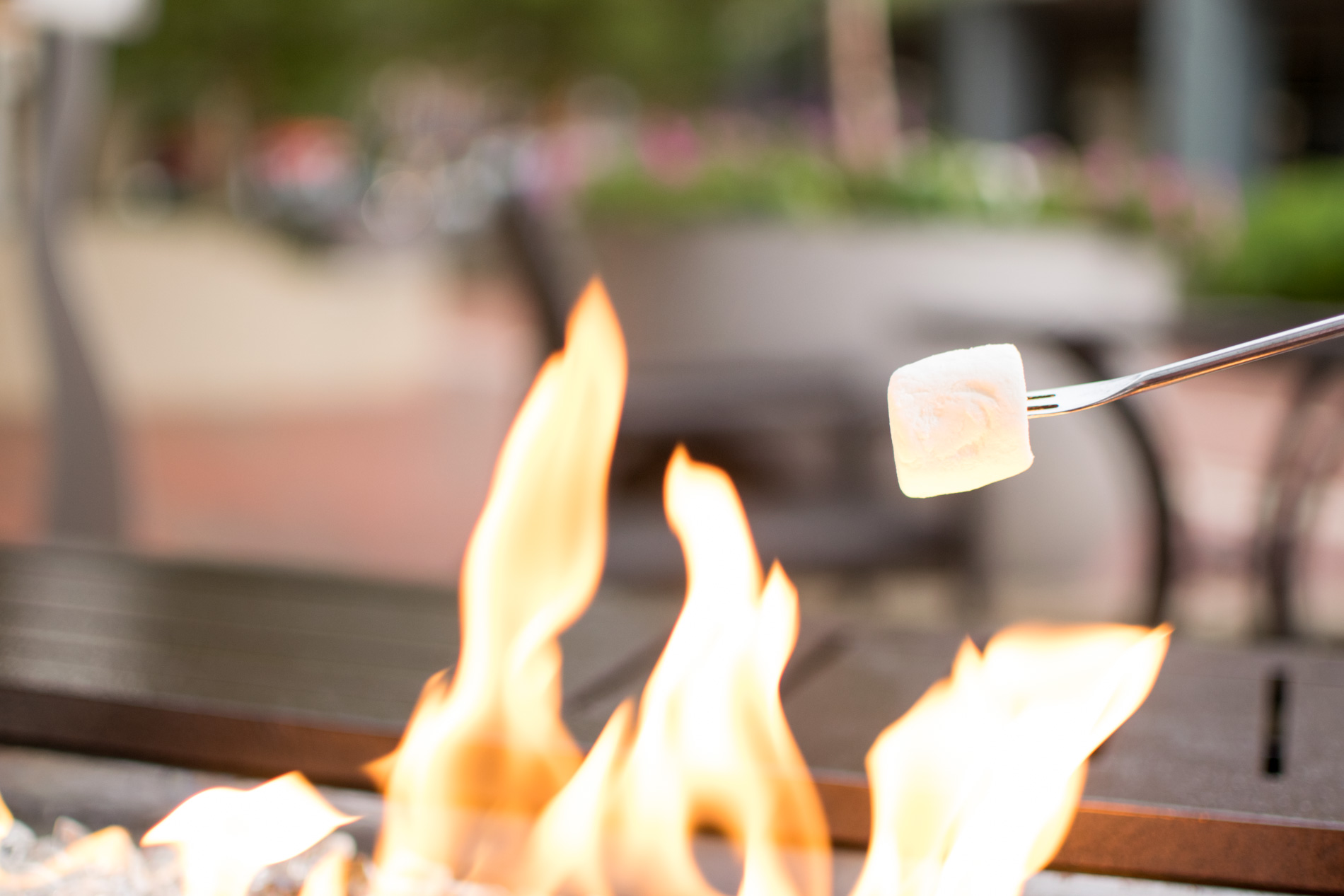 Restaurants with Outdoor Fire Pits in Boston, Aragosta Bar + Bistro, the-alyst.com