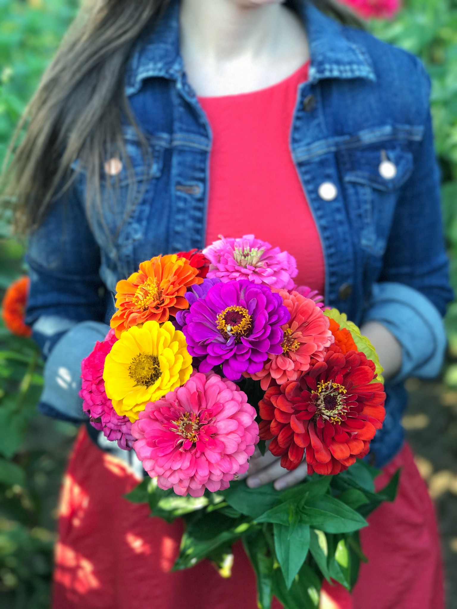 pick your flowers, parlee farms, flower farm, the-alyst.com