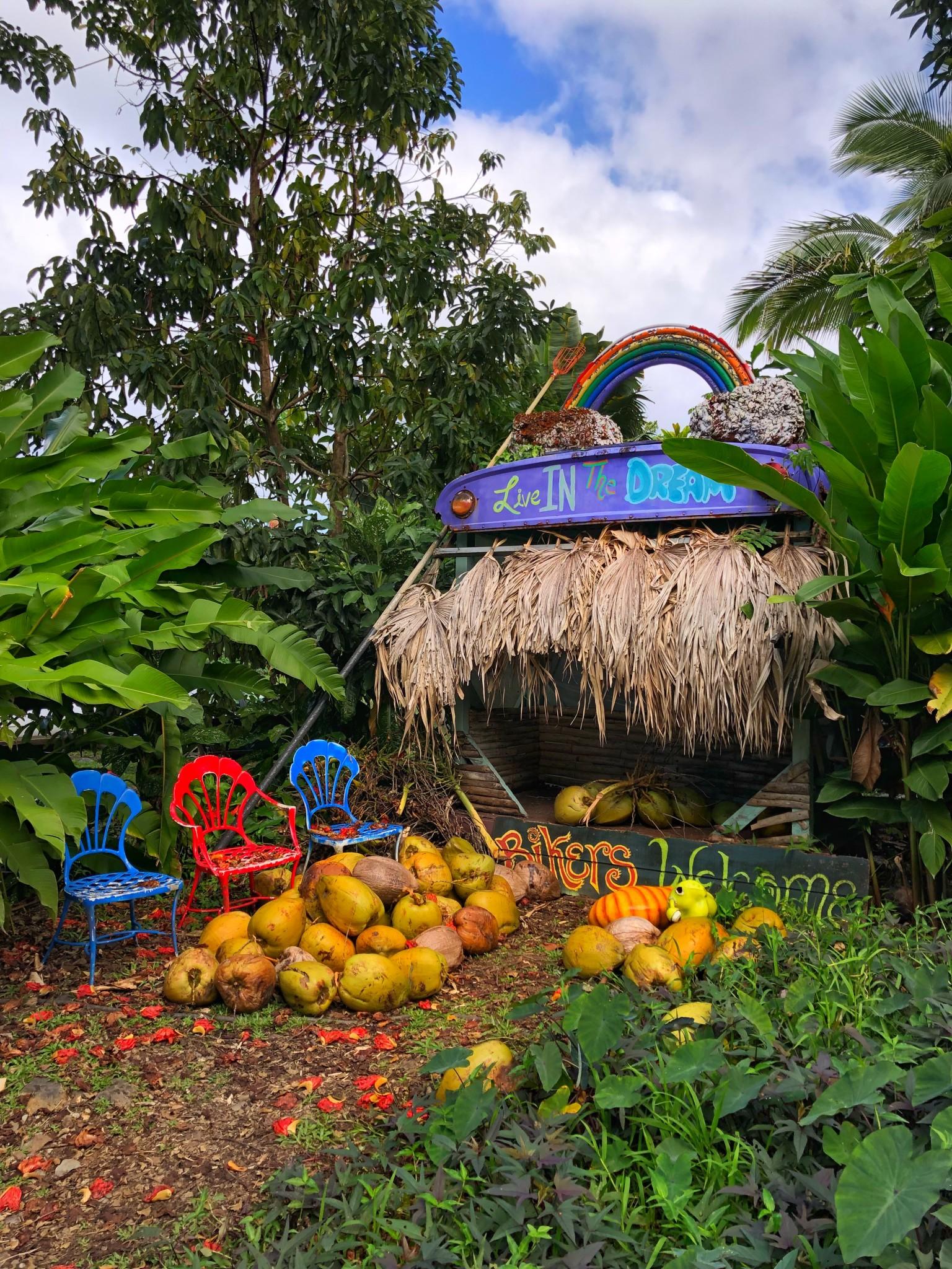 coconut glen's, road to hana, the-alyst.com