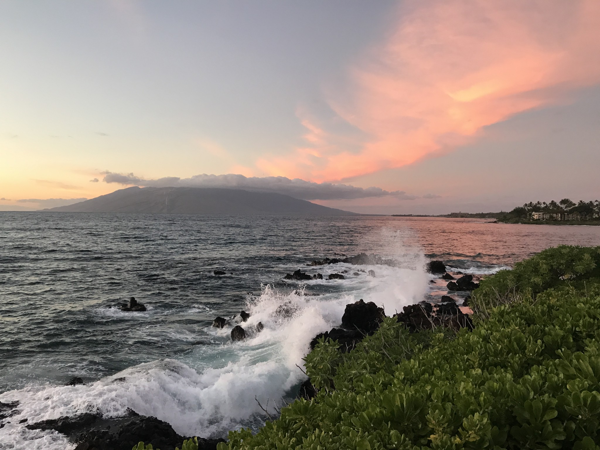 the four seasons resort maui at wailea, the-alyst.com