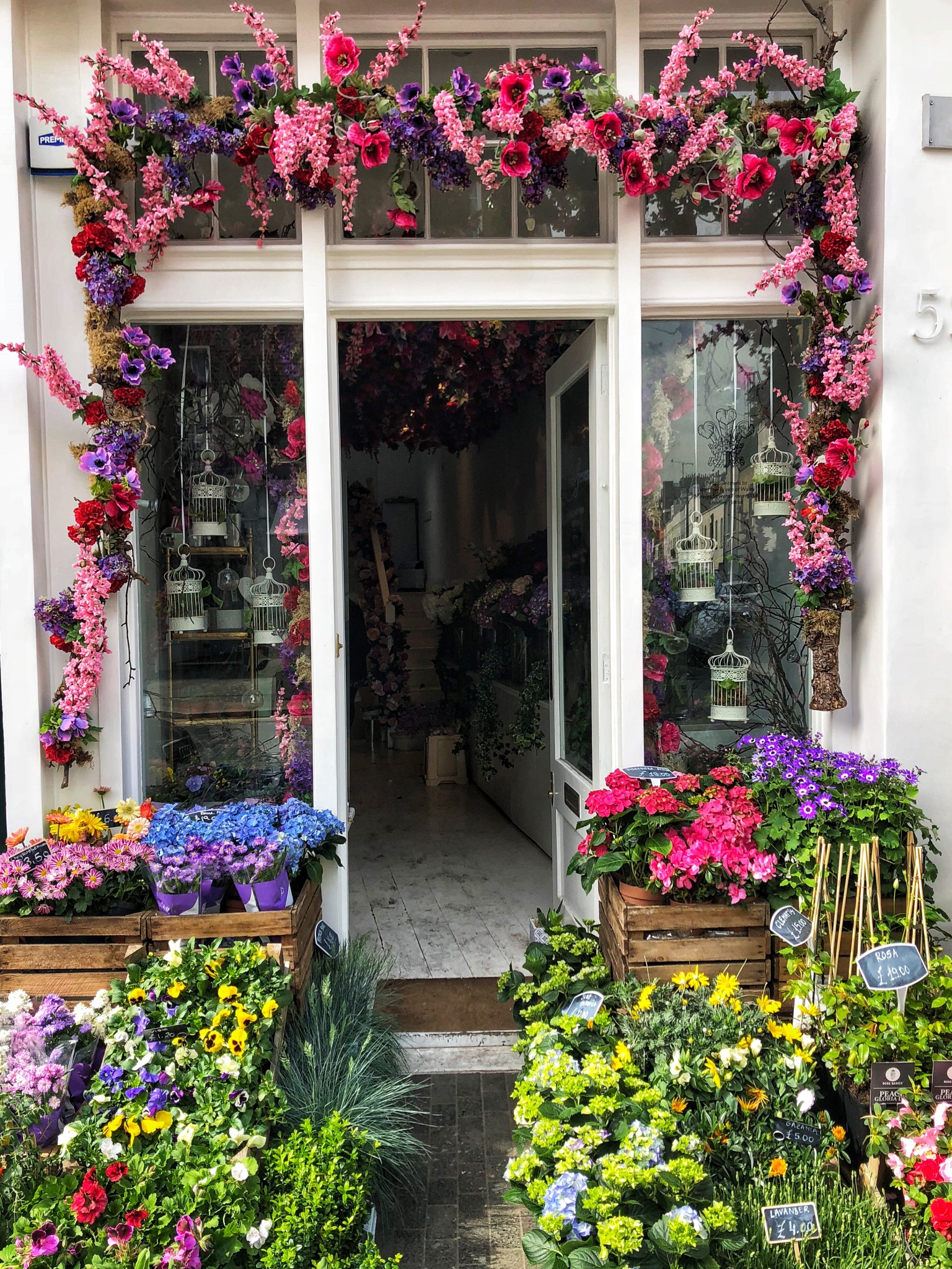 elizabeth street, belgravia, most instagrammable places in london, the-alyst.com
