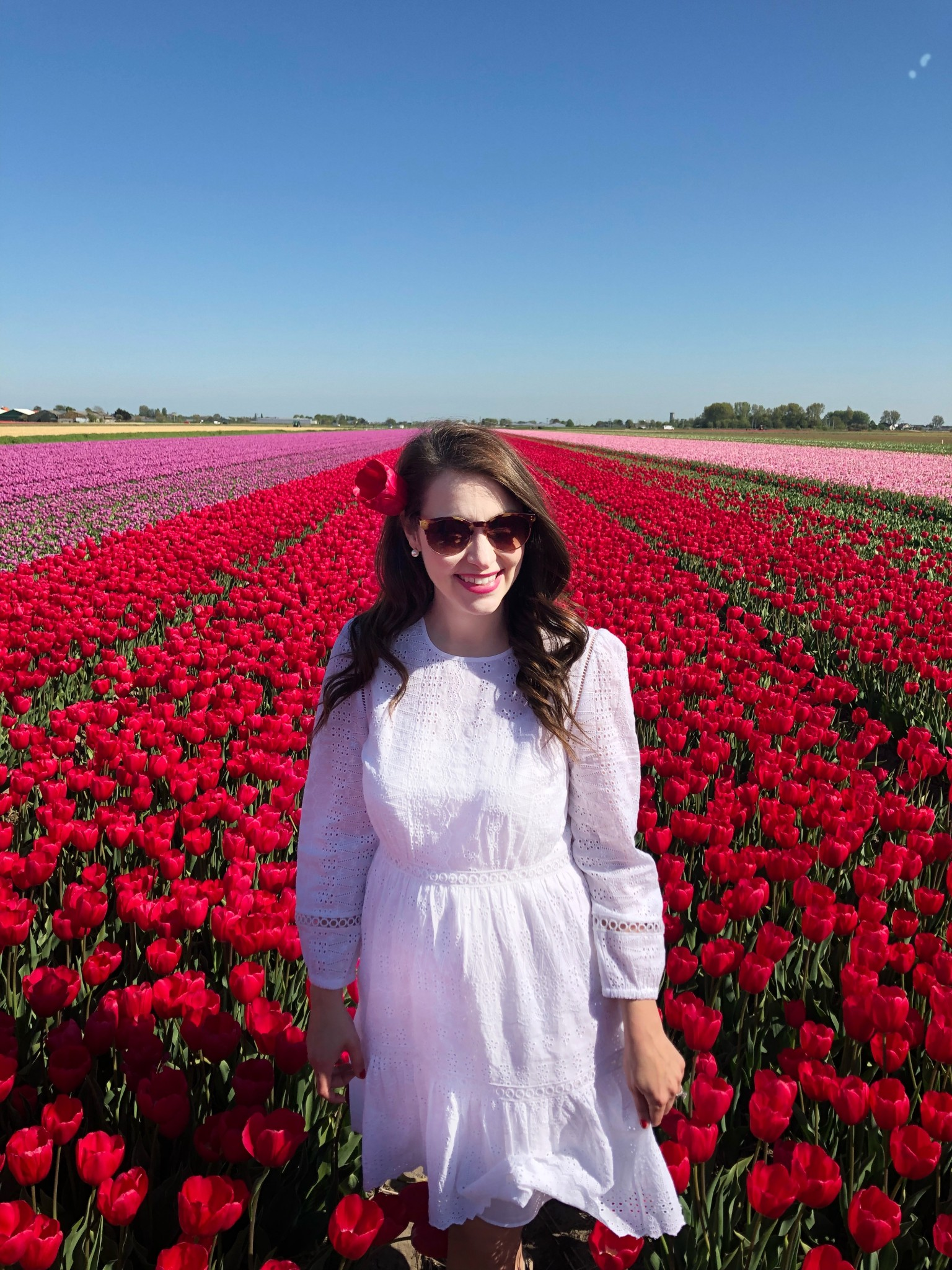 tulip fields netherlands, lisse, the-alyst.com