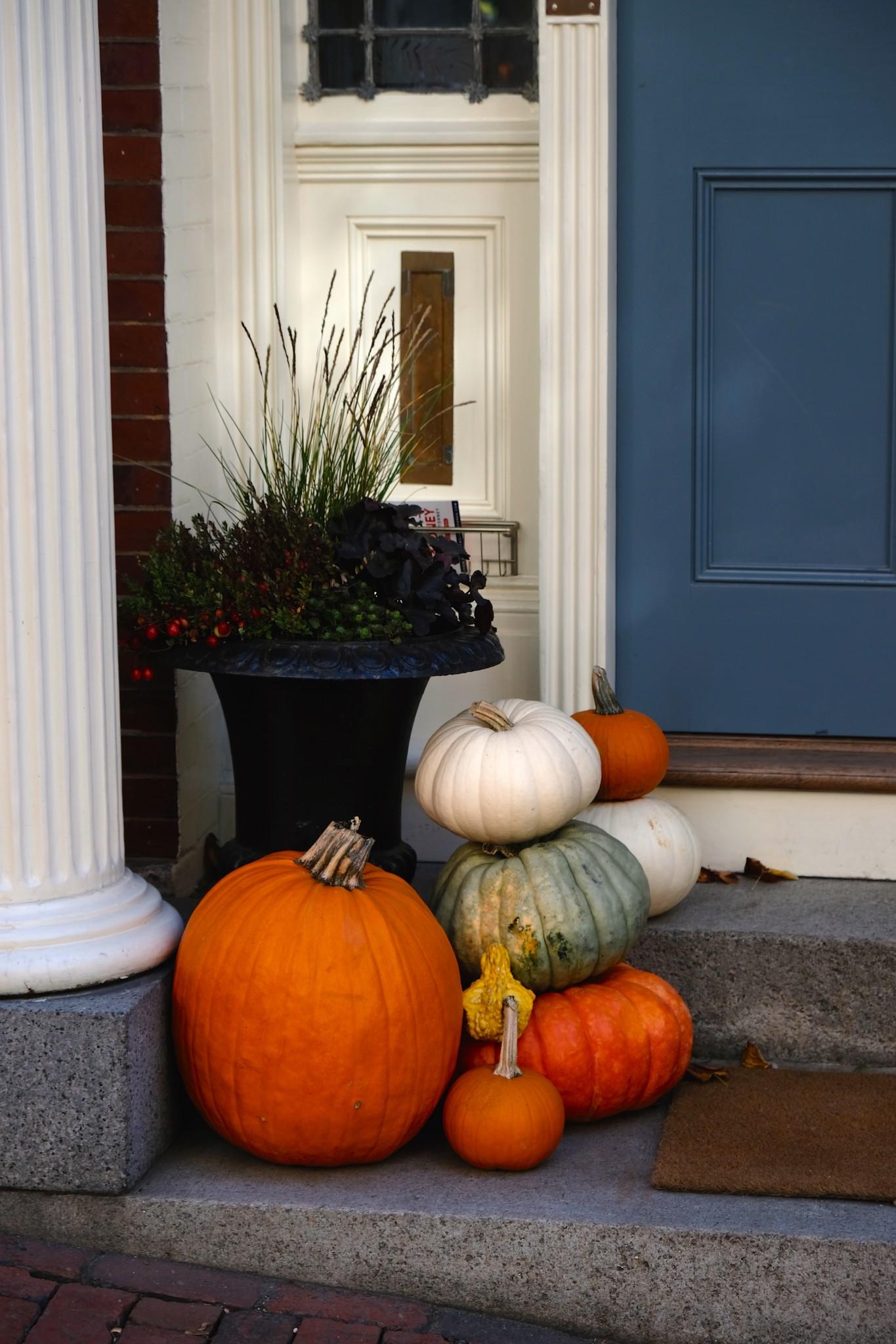 pumpkins on stoop, the-alyst.com