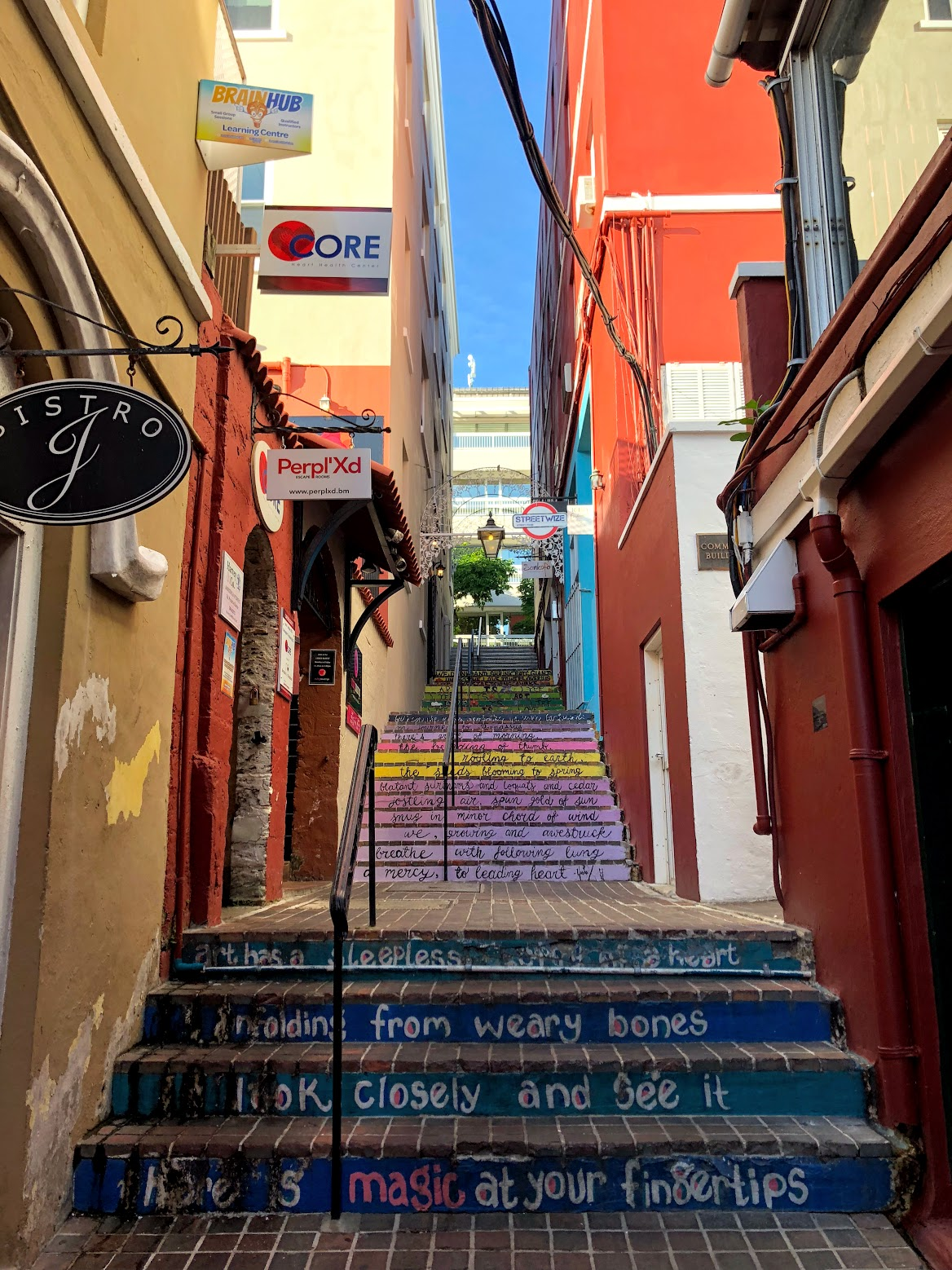 hamilton bermuda, the-alyst.com